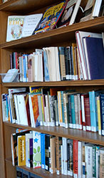 Schroder Library Shelves